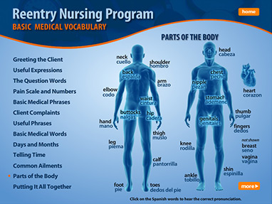 reentry nursing program basic medical vocabulary